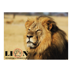 captured-in-africa-logos-lion-conservation-fund